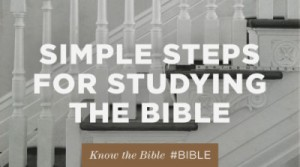 My Bible Study Plan