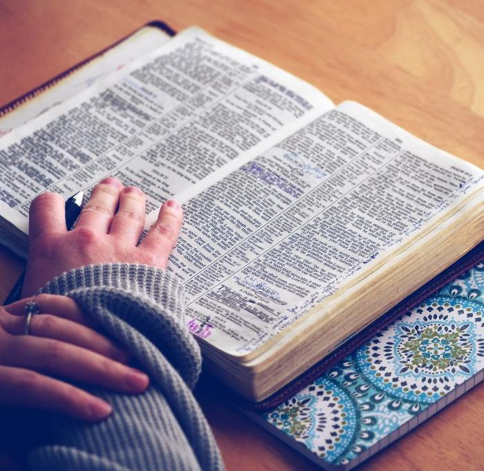 I Don't Know What to Read in my Bible?!